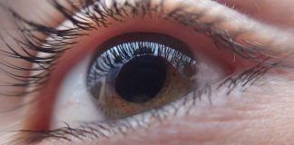 Expertos de la UNAM detectan proteínas que ayudan al diagnóstico temprano del glaucoma
