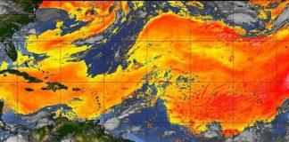 El polvo del Sahara se acerca a México, vía la Península de Yucatán
