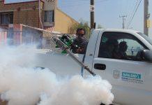 México cuenta con el insecticida suficiente para controlar mosquito trasmisor de dengue, zika y chikungunya