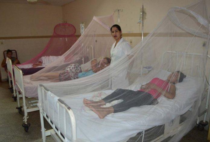 ¿Conoces la diferencia entre dengue y dengue grave?