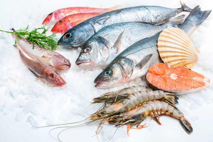 Casi todos los pescados y mariscos con rastros de mercurio