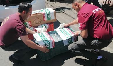 Inmovilizan y aseguran gel antibacterial en la Ciudad de México