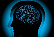 Alimentación balanceada y hábitos saludables, binomio benéfico para mantener sano el cerebro: IMSS