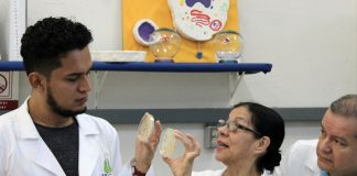 Especialistas del IPN detectan bacterias difíciles de combatir en los hospitales