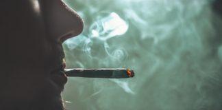 Consumo de marihuana y alcohol se disparó entre jóvenes, durante confinamiento