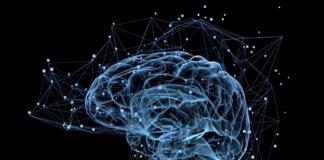 """""""El cerebro contiene más neuronas que las estrellas en la galaxia"""", dice neurólogo"""