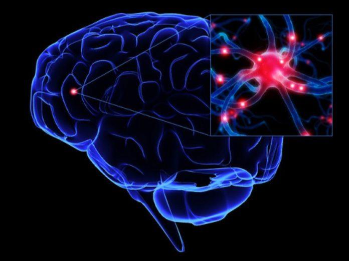 Cerebro esconde pensamientos sin que nos demos cuenta