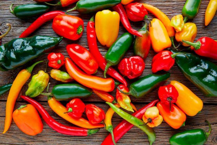 Investigadores del Cinvestav promueven beneficios medicinales del chile