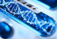 Asocian genes a casos graves de Covid-19