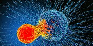Estos son los tipos de cáncer más mortales
