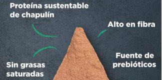 Mexicanas crean alimento rico en proteína a base de chapulines
