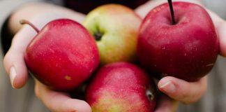 Comer manzanas podría hacerte más listo, según un estudio