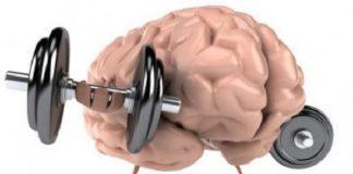 La salud del cerebro es crucial. Te contamos formas de hacerlo