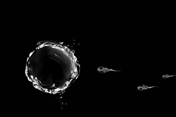 Los hombres producen cada vez menos espermatozoides, alerta estudio