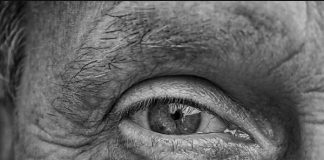Un paciente logró recuperar la visión tras inyectarle proteínas de un alga