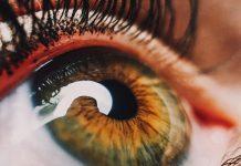 Mexicanos crean inteligencia artificial para detectar retinopatía diabética