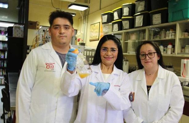 Científicos del IPN encuentran probiótico anticancerígeno en el pulque