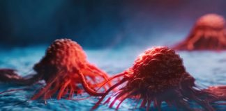 Encuentran medicamento que ataca células cancerígenas sin dañar tejido sano