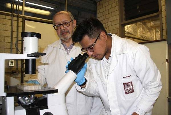 IPN descubre biomarcador para posible detección temprana de cáncer de mama