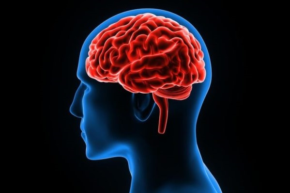 es como tu cerebro determina si tiene motivación para hacer una tarea