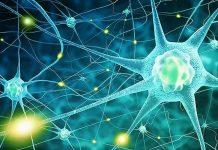 Medicamentos contra Sida podrían combatir problemas neurológicos