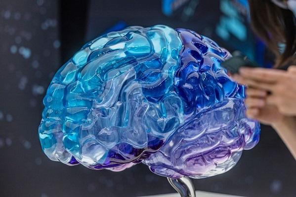 Procesamiento auditivo y del habla pasa en el cerebro de manera simultánea: estudio