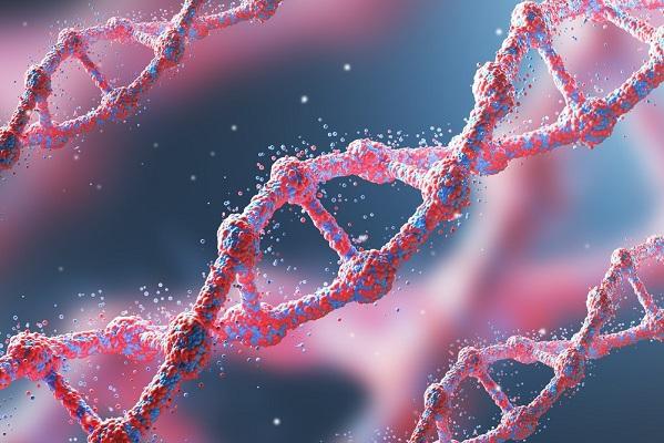 Hallan localizaciones del genoma asociadas al comportamiento